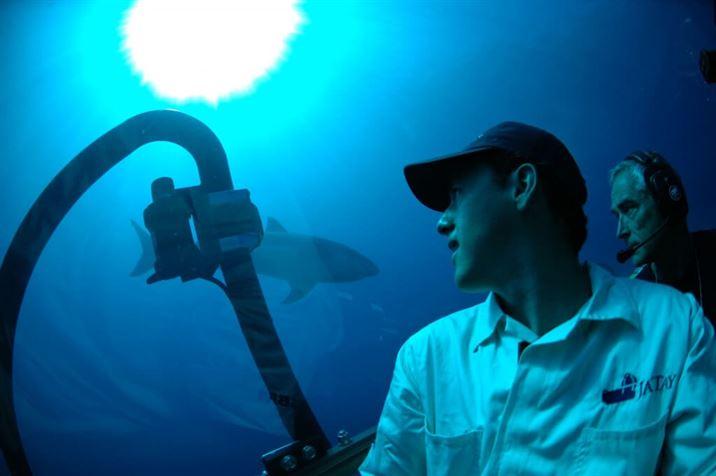 estudio-comportamiento-tiburones-en-mexico-mauricio-hoyos-james-ketchum-025-04