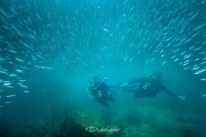 La Lobera, La Paz, Baja California Sur