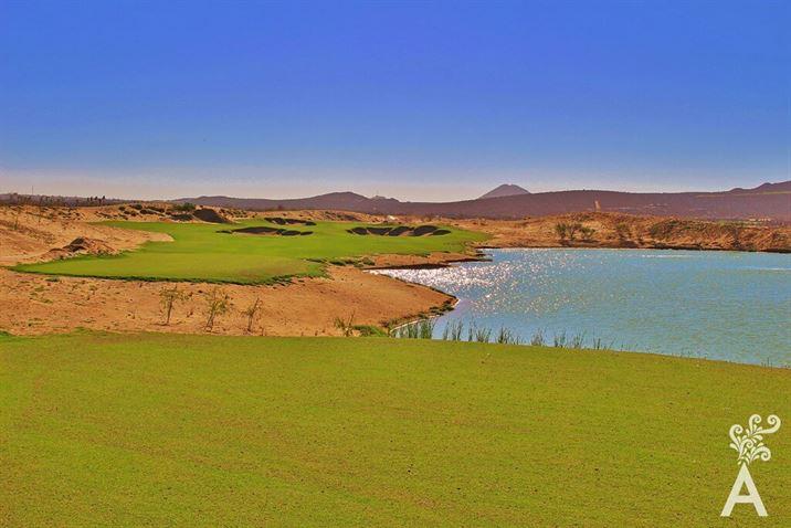 cardonal-golf-023-01