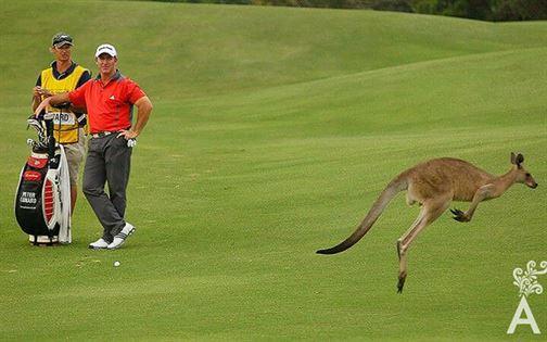 laura-g-bueno-golf-023-05